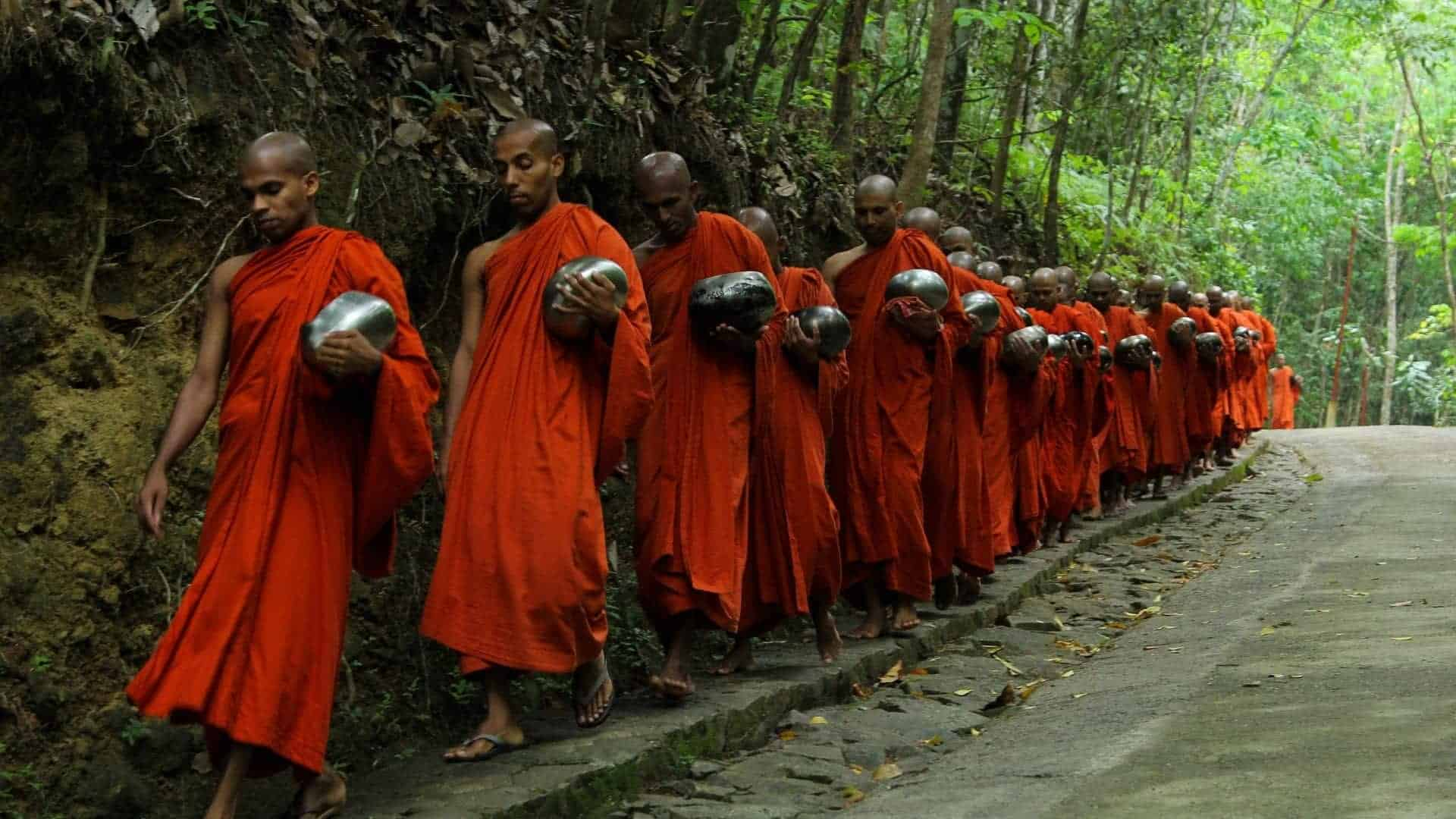 Buddhism: History and Schools